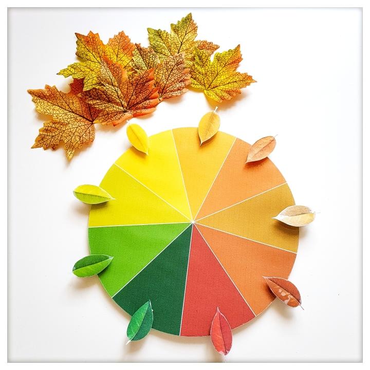 Roue des couleursd'automne